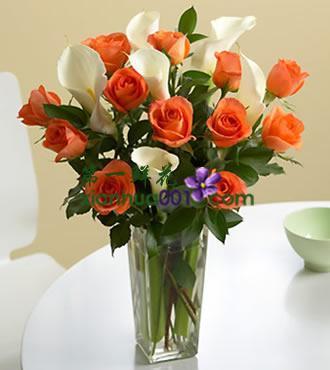 鲜花:美好人生 18枝马蹄莲