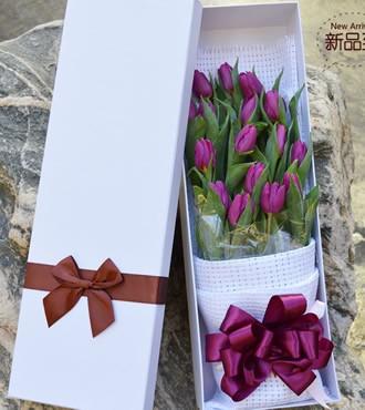 鲜花:甜蜜的爱恋 郁金香 顺丰直送