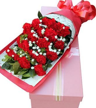 鲜花:无尽的爱 19枝康乃馨顺丰直