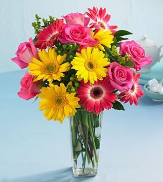 鲜花:夏日的色彩 14枝玫瑰扶郎