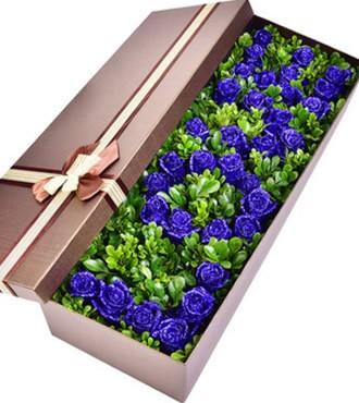 鲜花:梦幻之恋 33枝蓝玫瑰