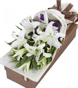 鲜花:不能没有你  12朵白百合