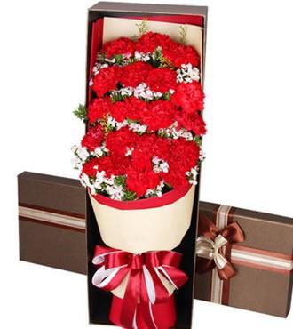 鲜花:感谢母亲 19红色康乃馨