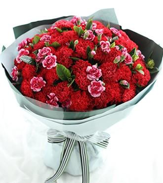 鲜花:幸福万年长 66枝康乃馨