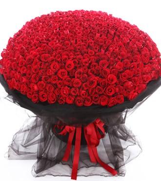 鲜花:爱到永久 999枝红玫瑰
