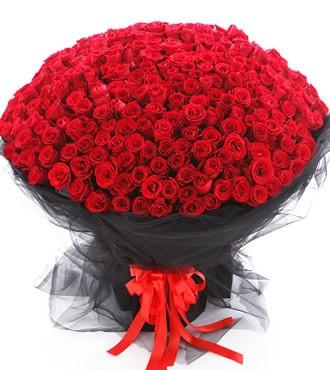 鲜花:想你365天 红玫瑰365枝