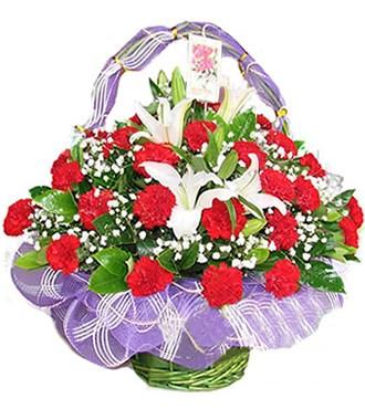 花篮:感谢一生 33枝红康乃馨