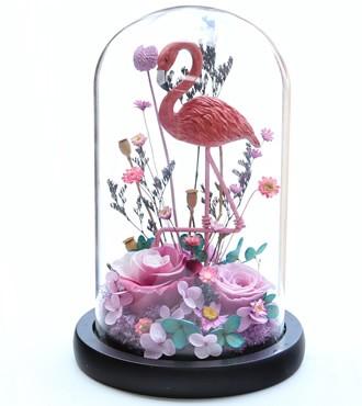 保鲜花:火烈鸟