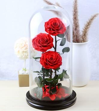 保鲜花:三生三世