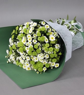 鲜花:誓言(小雏菊)