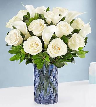 鲜花:纯洁无瑕 12枝马蹄莲