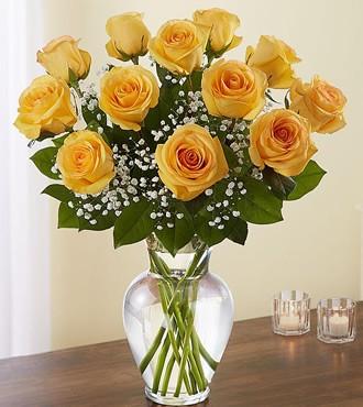 鲜花:需要有你 12枝黄玫瑰