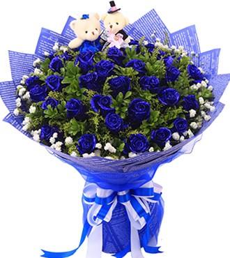 鲜花:幸福的微笑 33枝蓝玫瑰