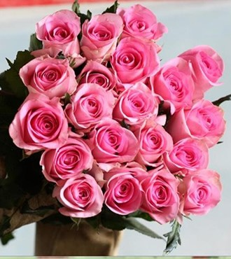 粉玫瑰 苏醒 20支/扎 鲜切花