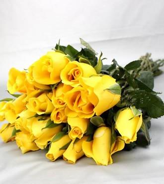 玫瑰 黄色 20支/扎 鲜切花