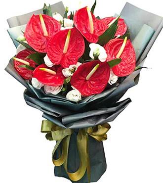 鲜花:鸿运连连 10枝红掌