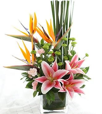 会议用花:商务桌花2