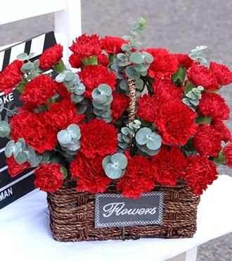 花篮:幸福绽放 33枝红康乃馨