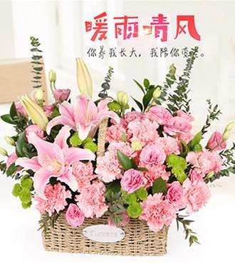 花篮:暖雨清风 12枝康乃馨