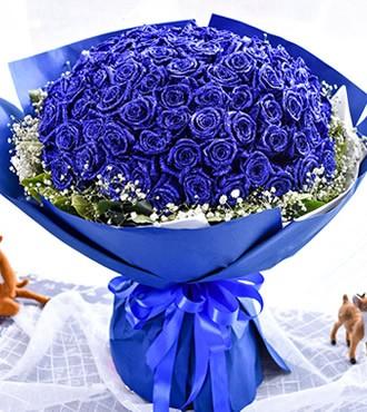 鲜花:爱意永恒 99枝蓝玫瑰
