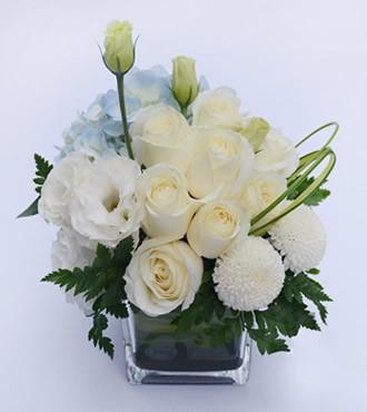 会议用花:情意桌花