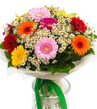 鲜花:深情的问候 15枝扶郎