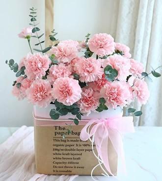 鲜花:永远年轻 19枝康乃馨